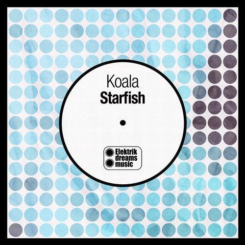 Koala – Starfish | Elektrik Dreams Music | promo